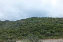 Rif 59 Terreno Monte Narba
